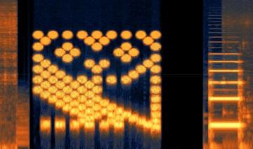 Acorn Owl Spectragram (in RX)c